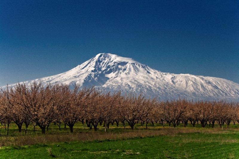 Ararat-