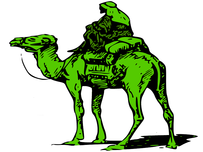 Silk-Road-Marketplace-Camel