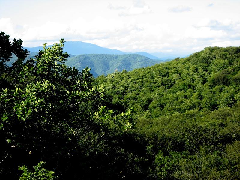 Kutaisi - Sataplia view from glass 2